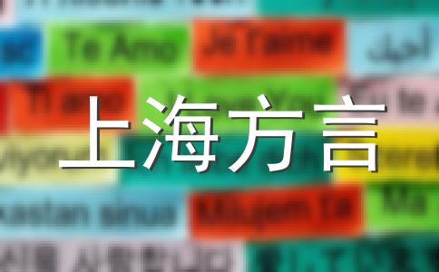 上海话最近流行语