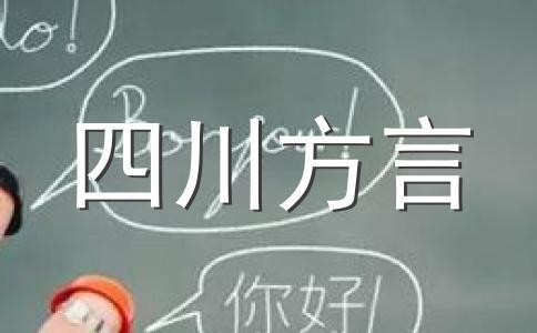 四川话词汇构成(四)